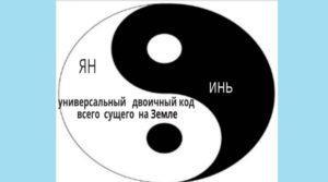 символ Ян и Инь