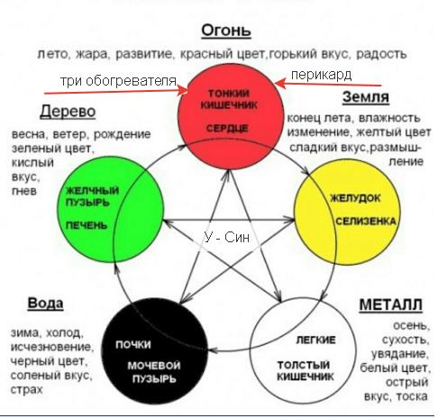 схема У - Син